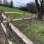 Rustic post and rail installation